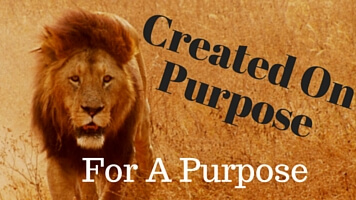 You Were Created On Purpose (1)