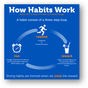 How habits work (1)